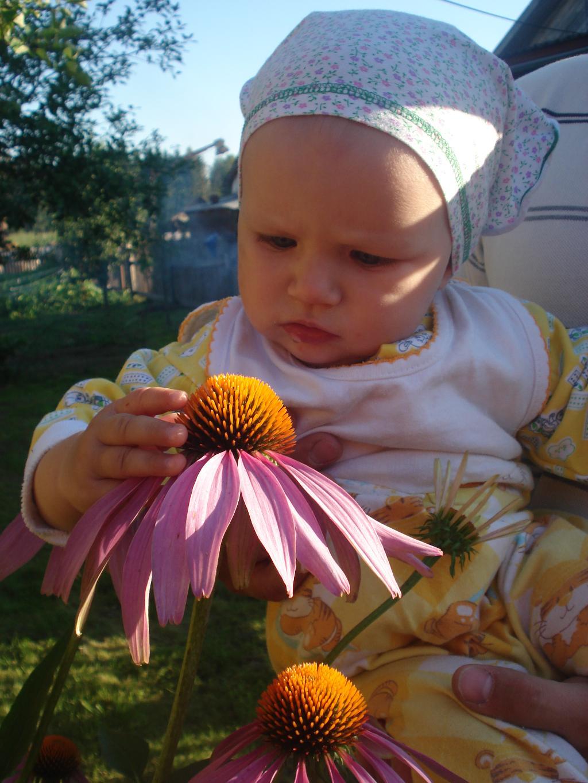 Цветик и пчёлка. Цветочное настроение