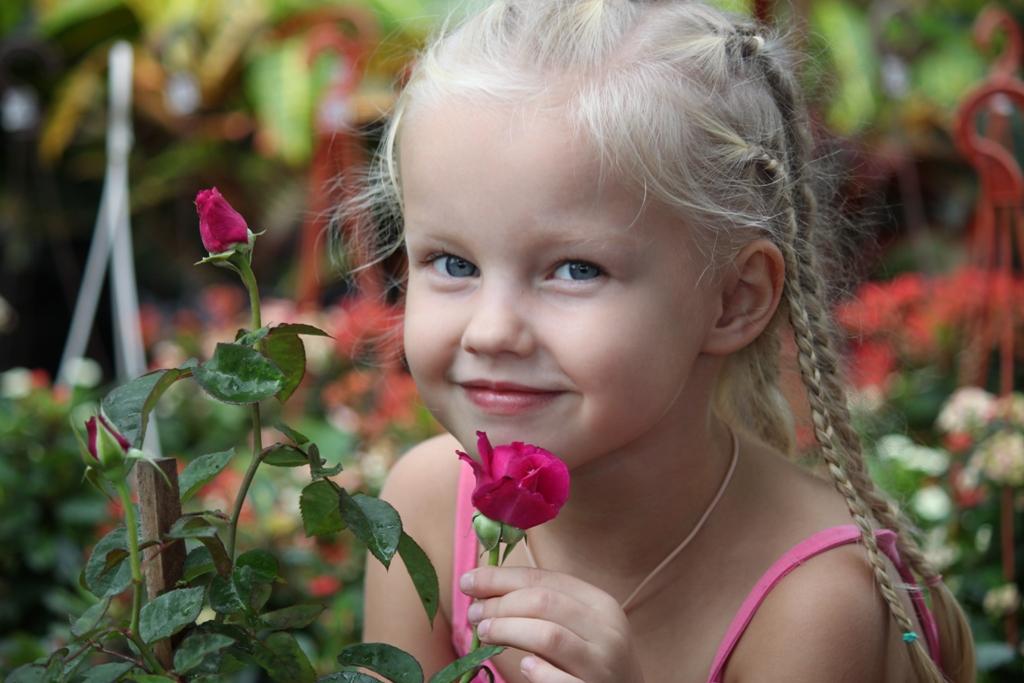 Любимые розочки.. Цветочное настроение