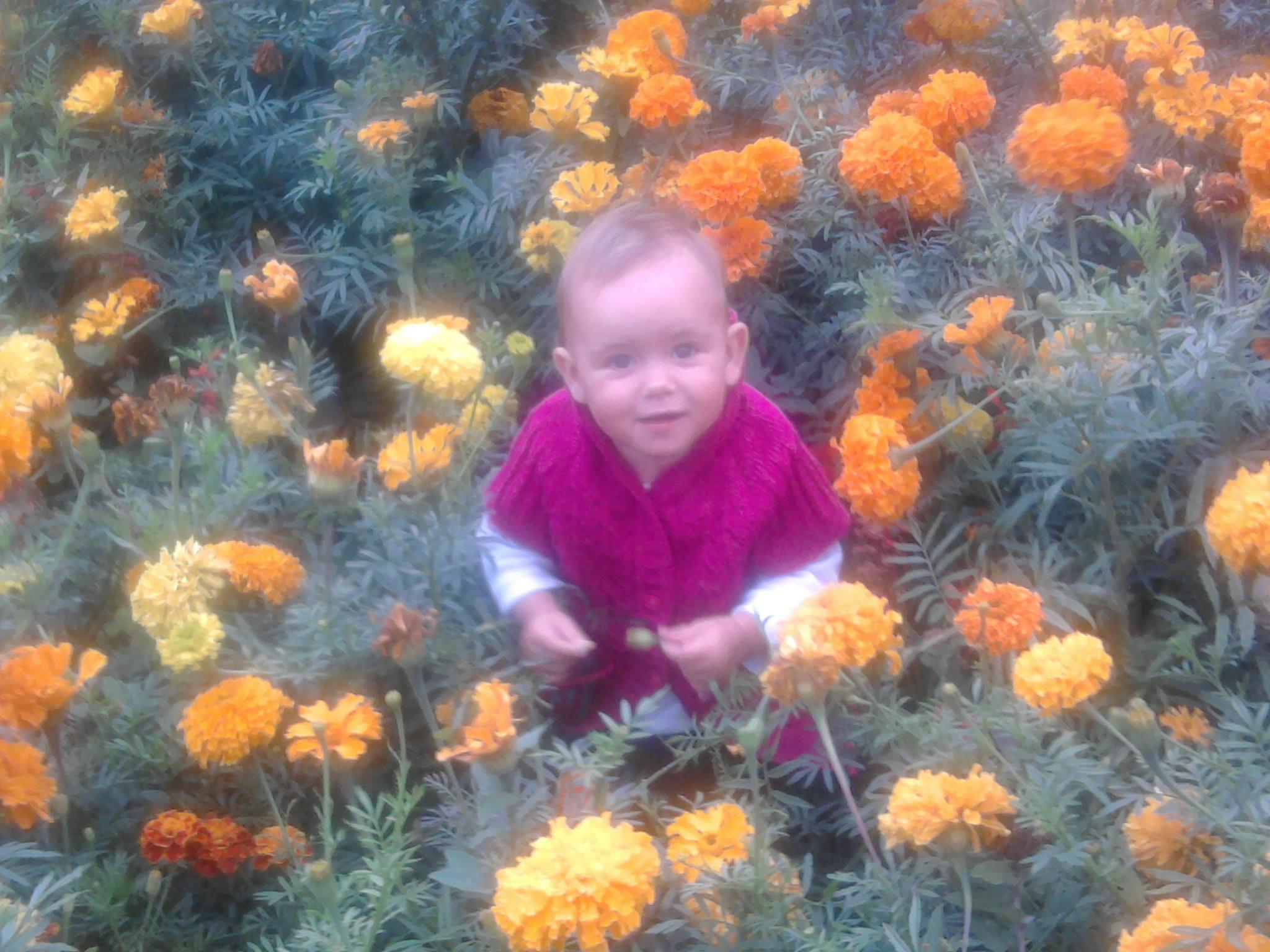Самый красивый цветочек. Цветочное настроение