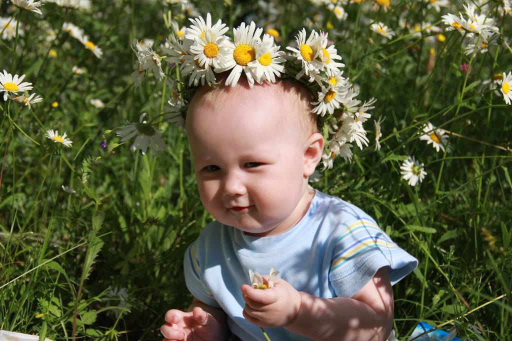 Поздравляю милых мам и дарю я вам ромашку!. Цветочное настроение