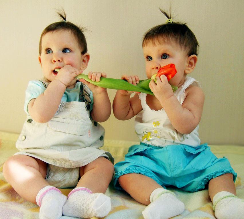 Цветочные близнецы. Цветочное настроение