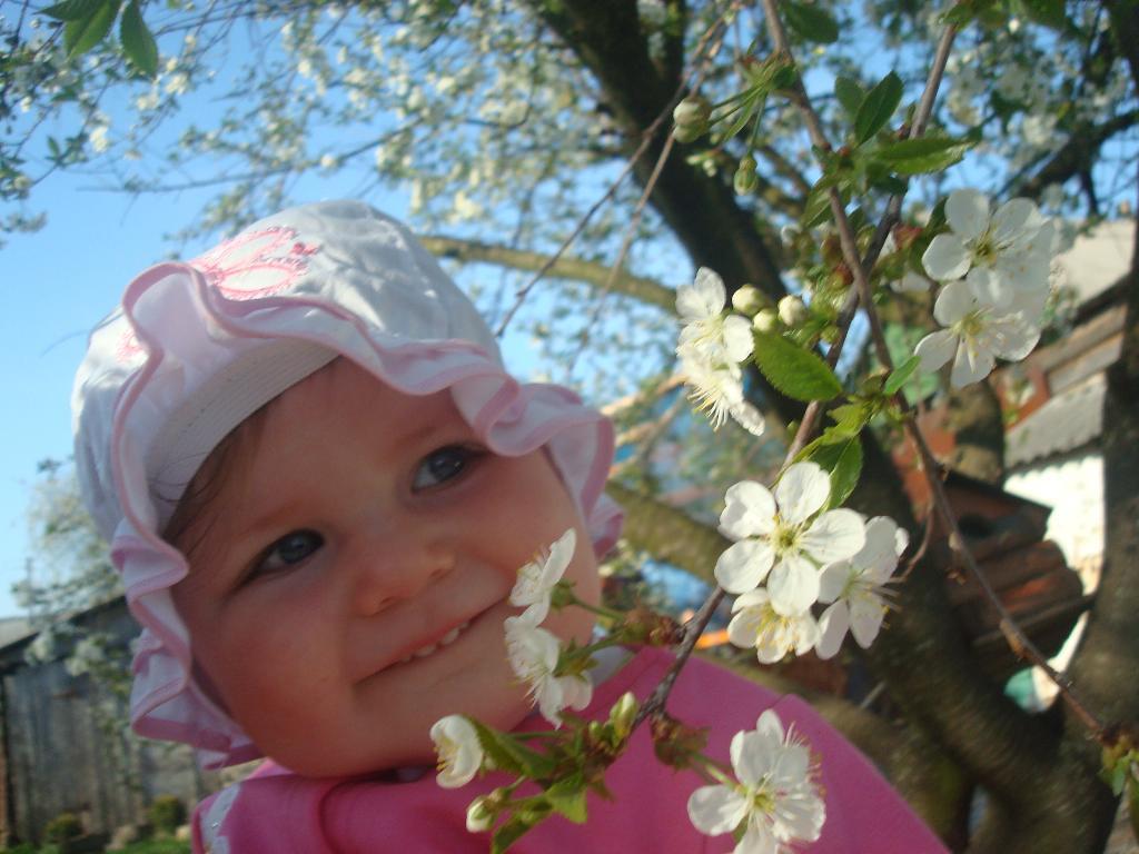 цветочки. Цветочное настроение