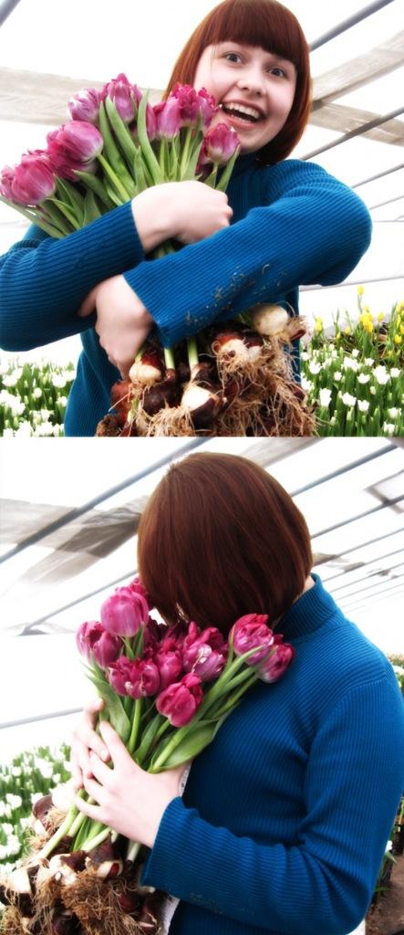 Обожаю тюльпаны!!!!.
