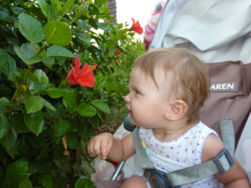 Как же пахнет этот заморский цветочек!. Цветочное настроение