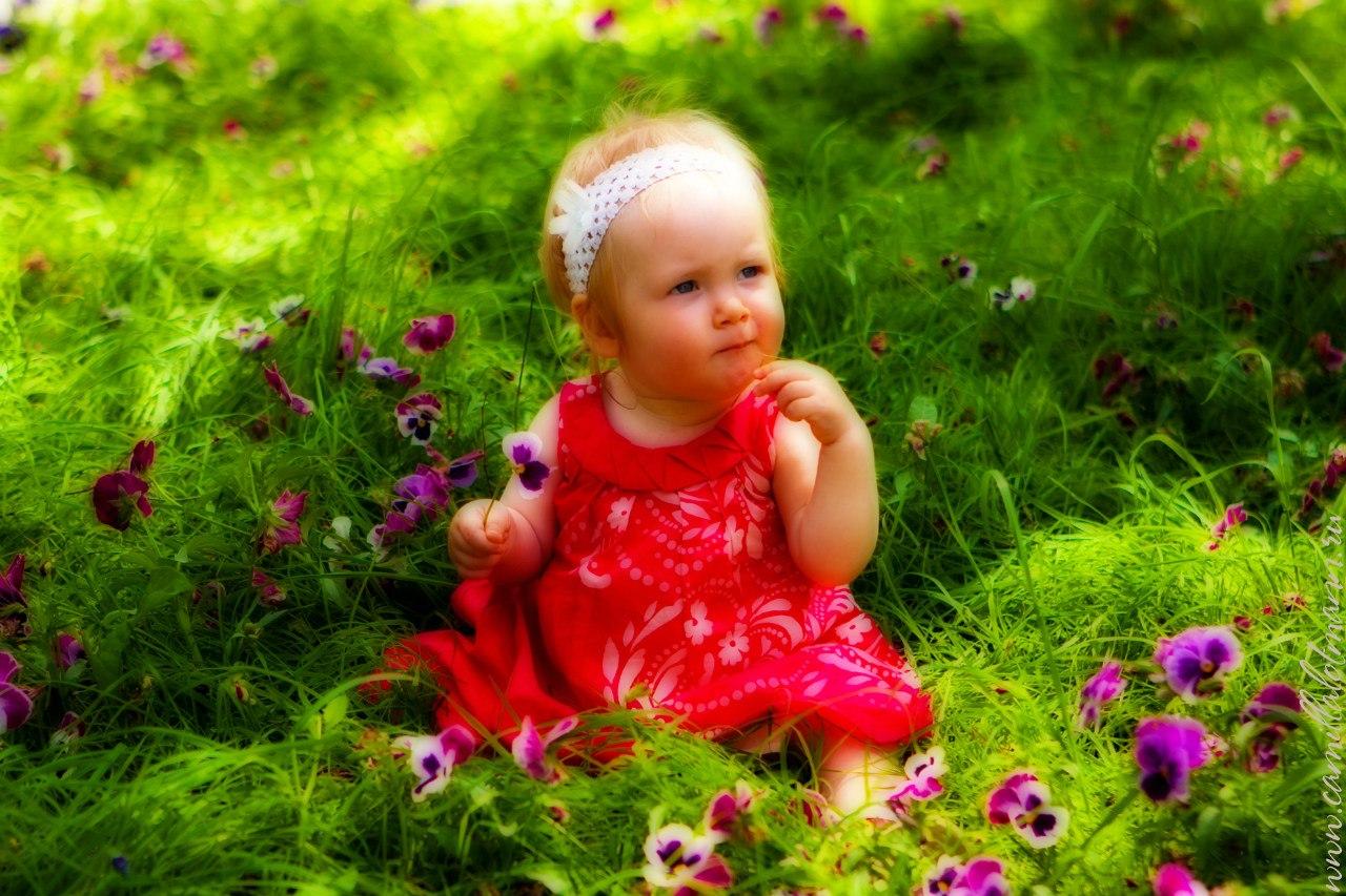 Цветочное настроение. Цветочное настроение