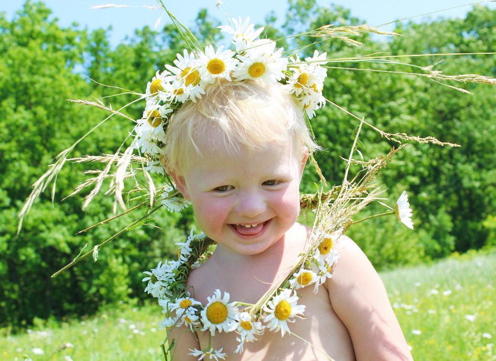 Ромашковое счастье. Цветочное настроение