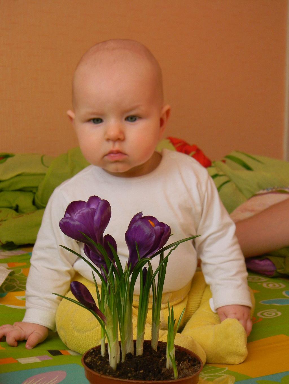 'Ах вот вы какие,цветочки!!!'. Цветочное настроение