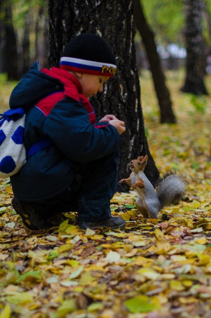 Осенняя прогулка. Самый сильный и здоровый!