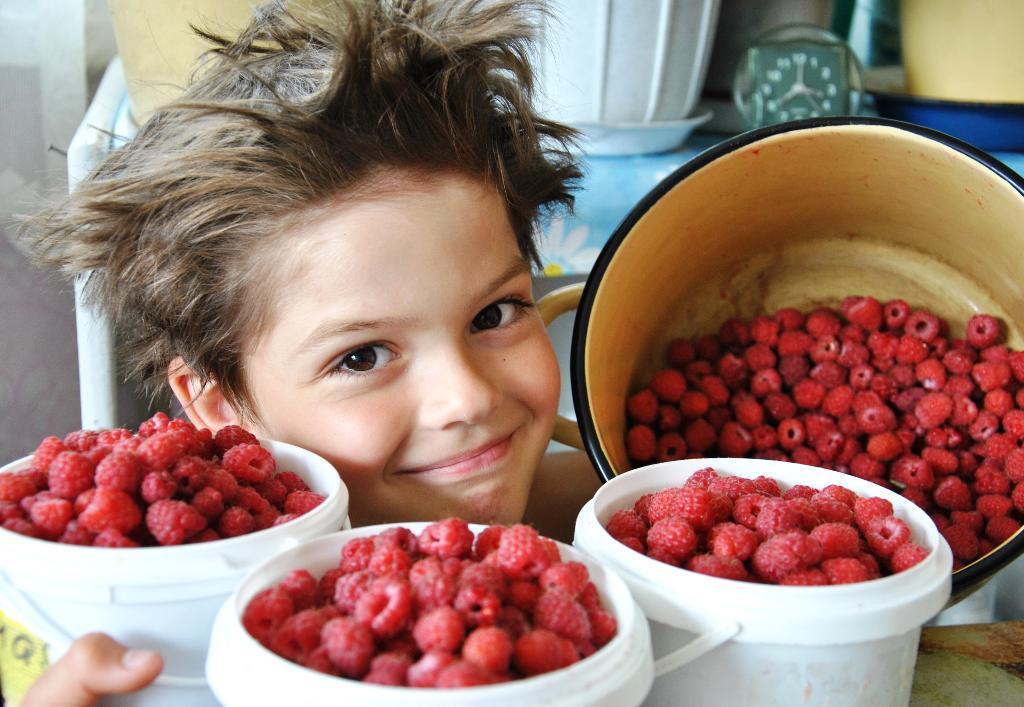 скорее бы в деревню за ягодками с куста!. Наши дети мечтают о лете!