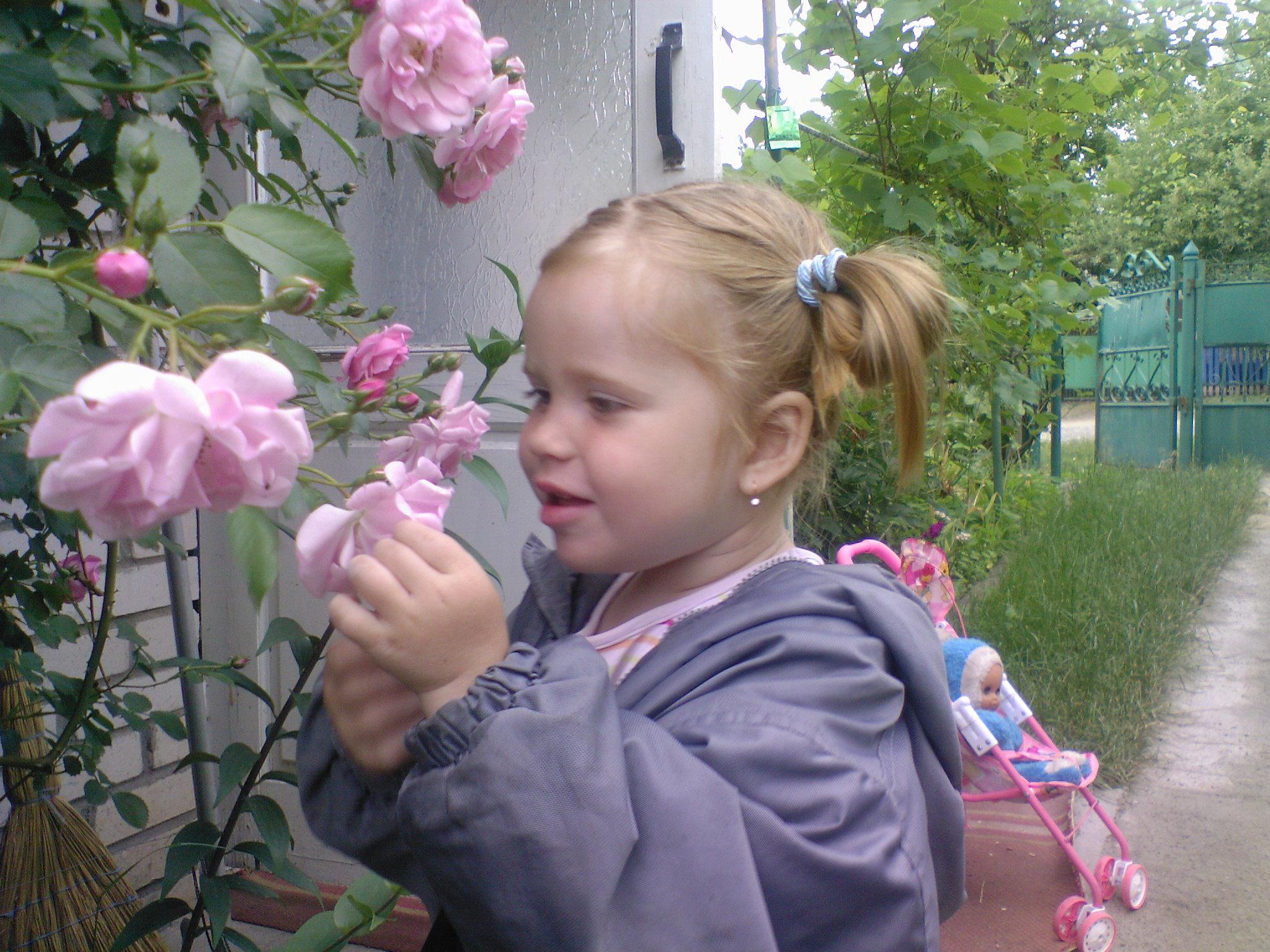 у бабушки в розовом саду. Цветочное настроение
