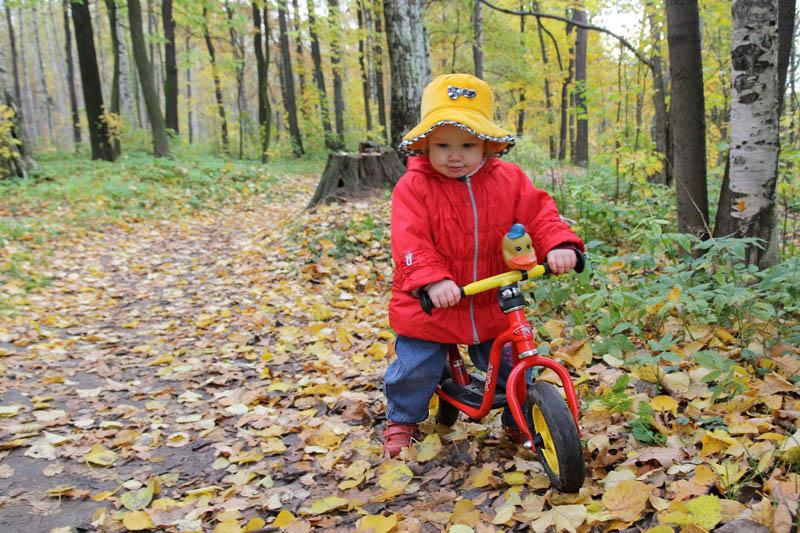 Осенняя прогулка. Пора кататься!