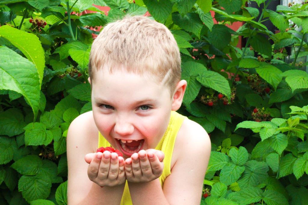 Люблю деревню я и лето!!!!. Наши дети мечтают о лете!