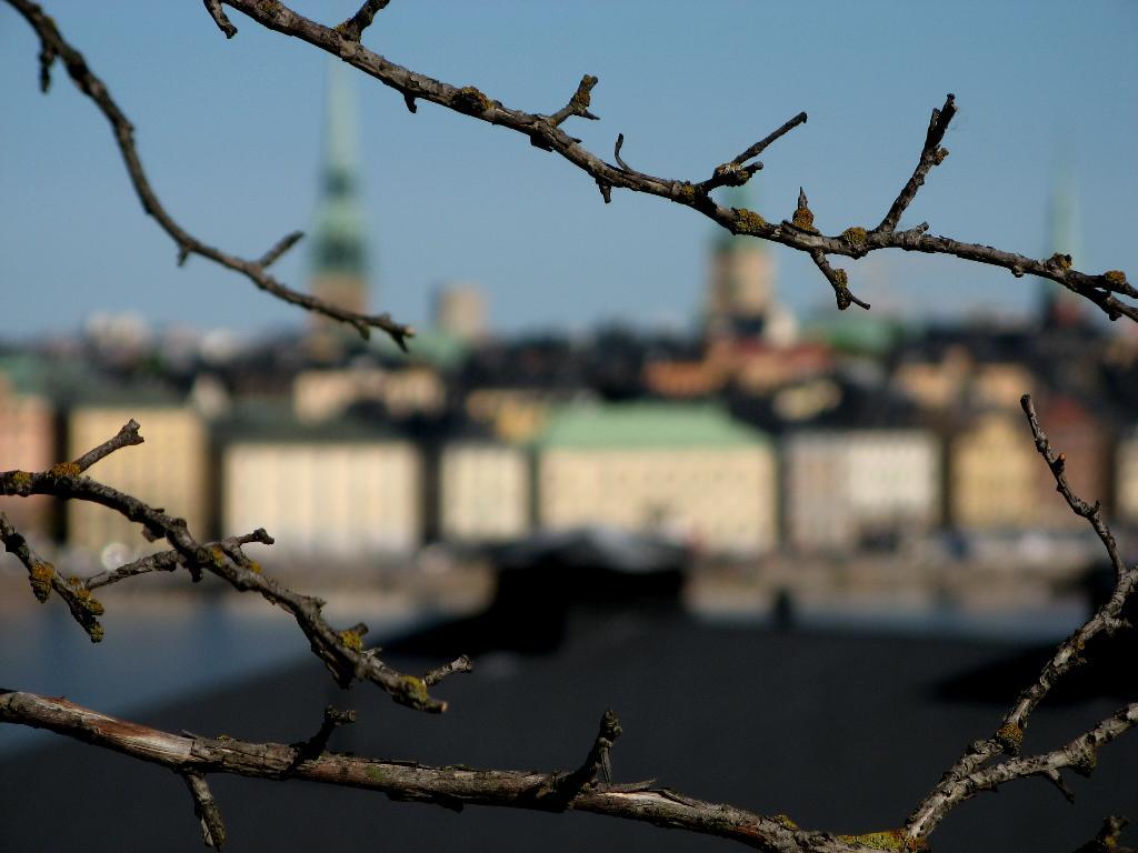 Майский Стокгольм. Блиц: весна идет!