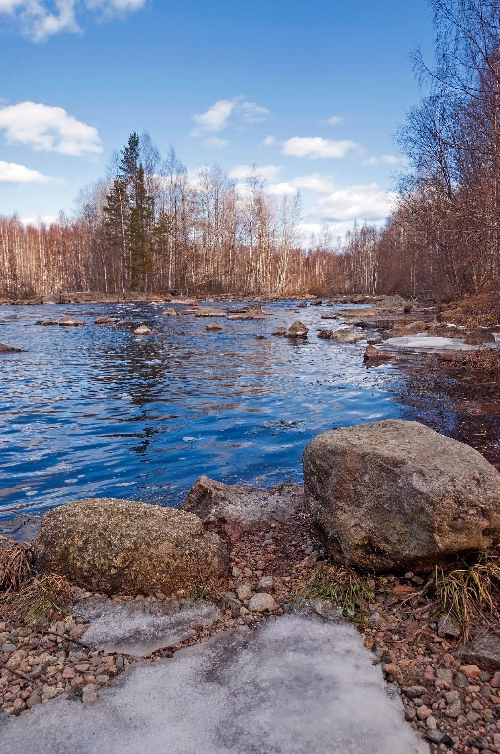 Весенняя река. Блиц: весна идет!