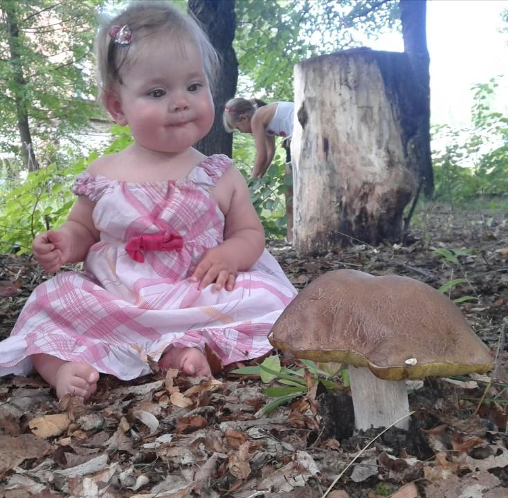 Первый гриб.... От улыбки хмурый день светлей!