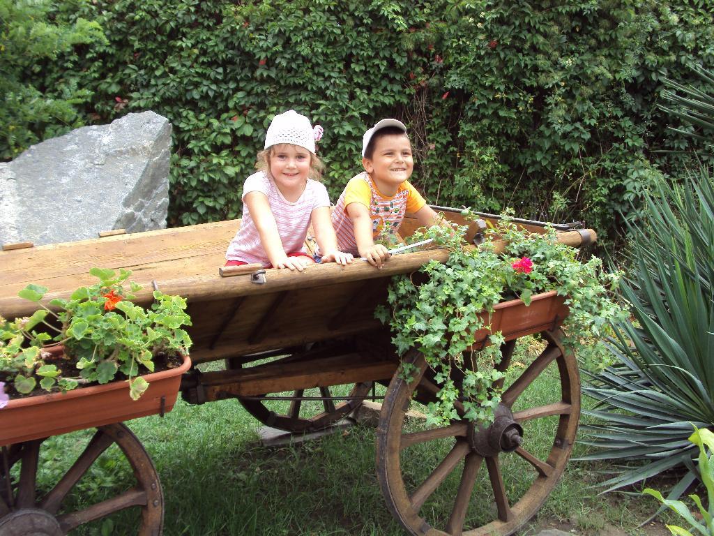 Двое в телеге, не считая герани))). Настоящие друзья