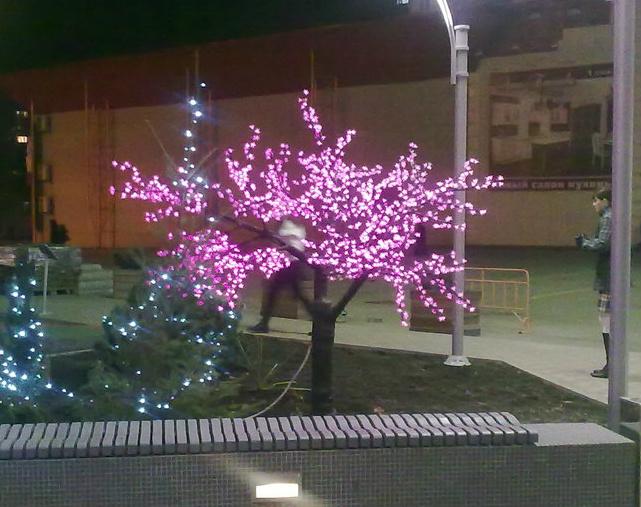 Дерево перед входом в торговый центр!. Блиц: розовое