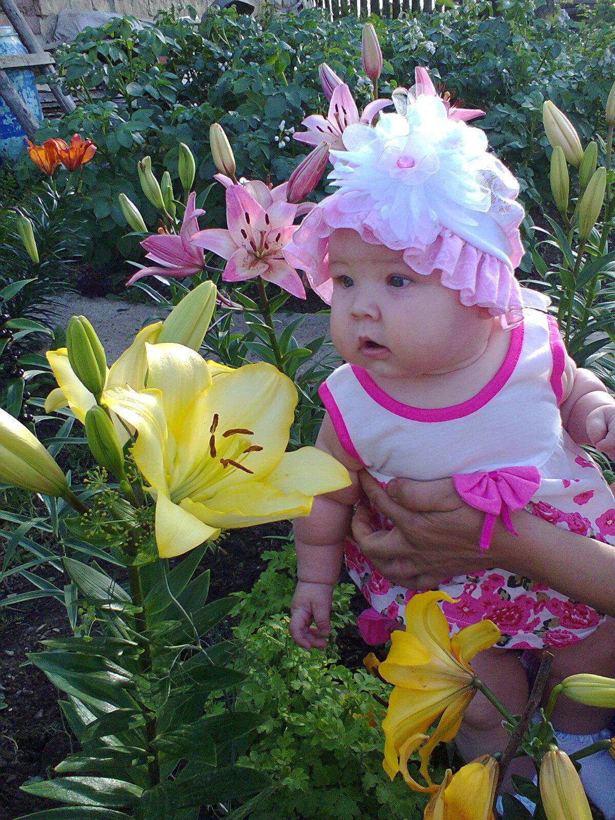 2 цветочка. Дары лета