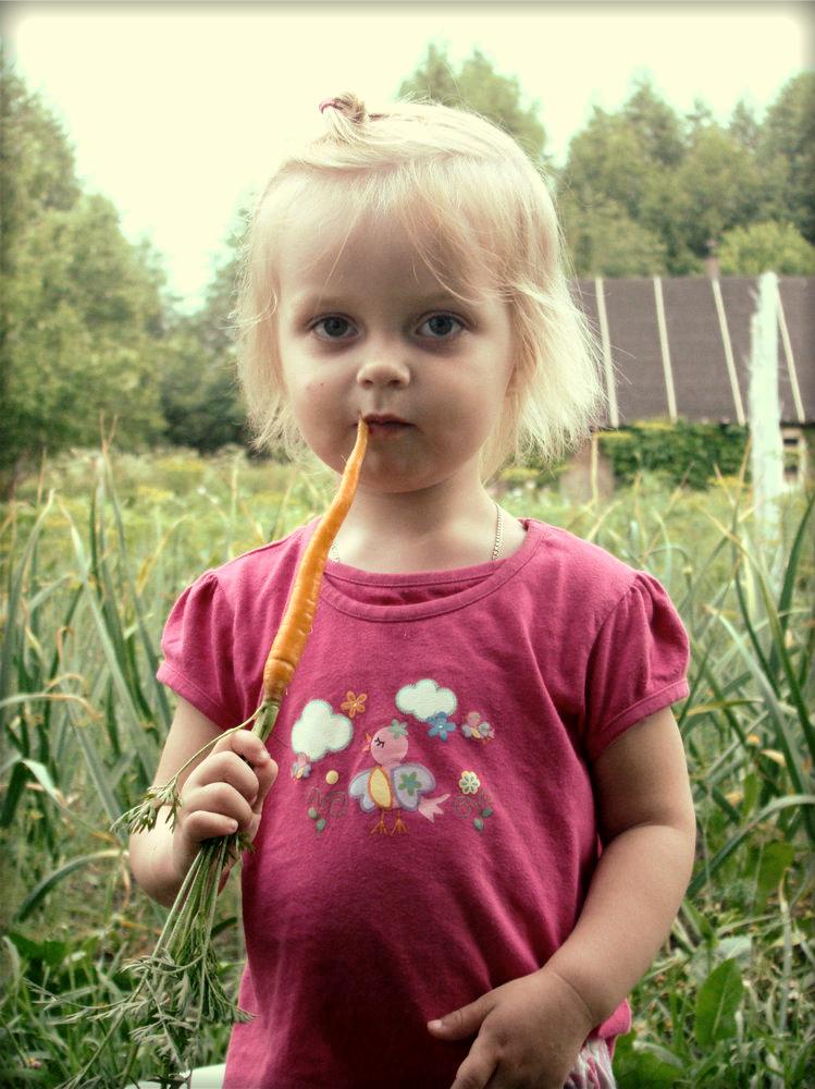 Морковка еще не доросла, но такая вкуснаааяяя.... Дары лета