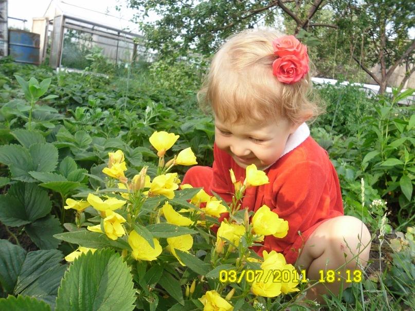 Цветочек в цветочках. Дары лета