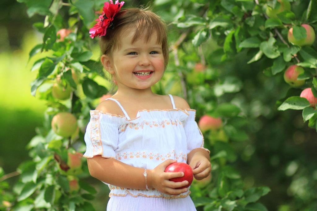 Одарило лето урожаем яблок. . Дары лета