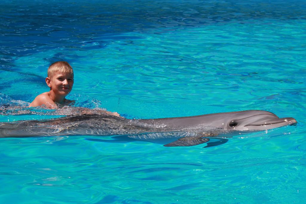 Ну какое море без дельфинов?! . По морям, по волнам...