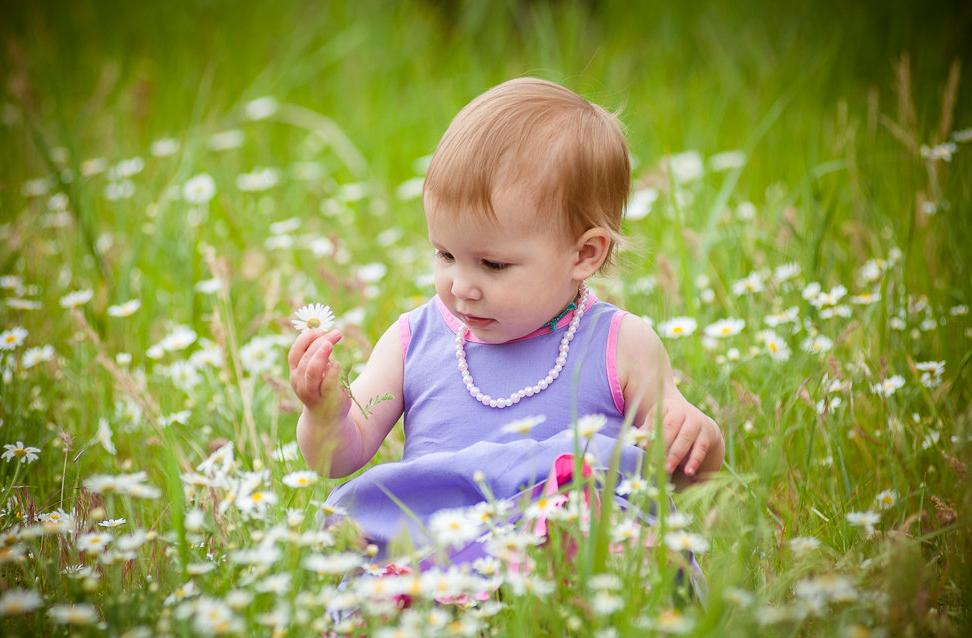 Вероника собирает цветы. Летний образ