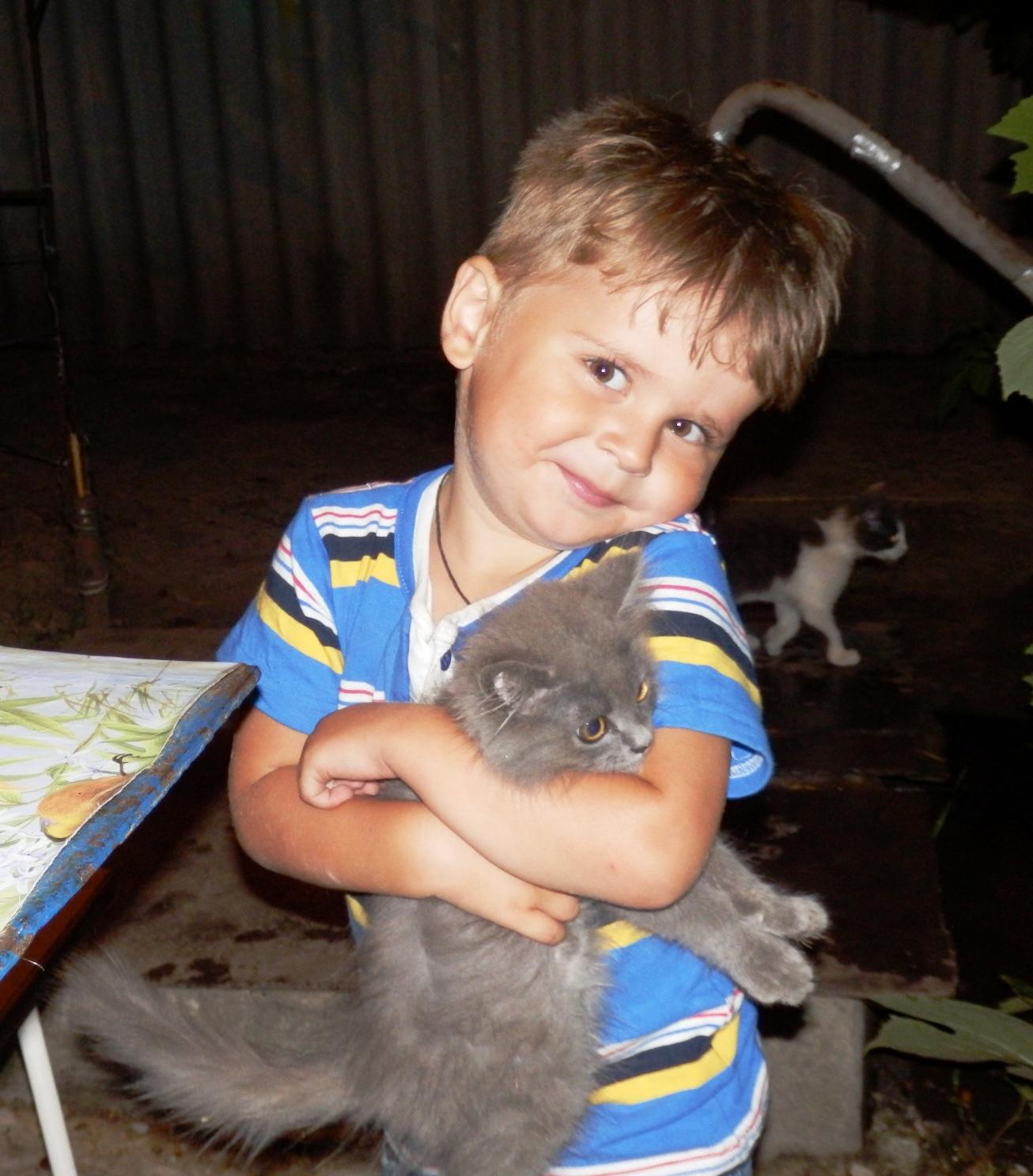 Очень я люблю котёнка - он мурлыкает так звонко!. Братья наши меньшие