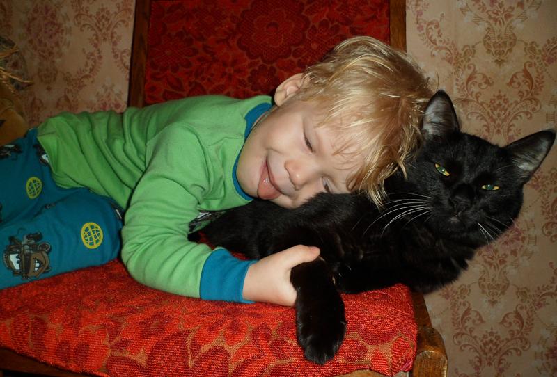 Суровый кот Фидель уважает детей.