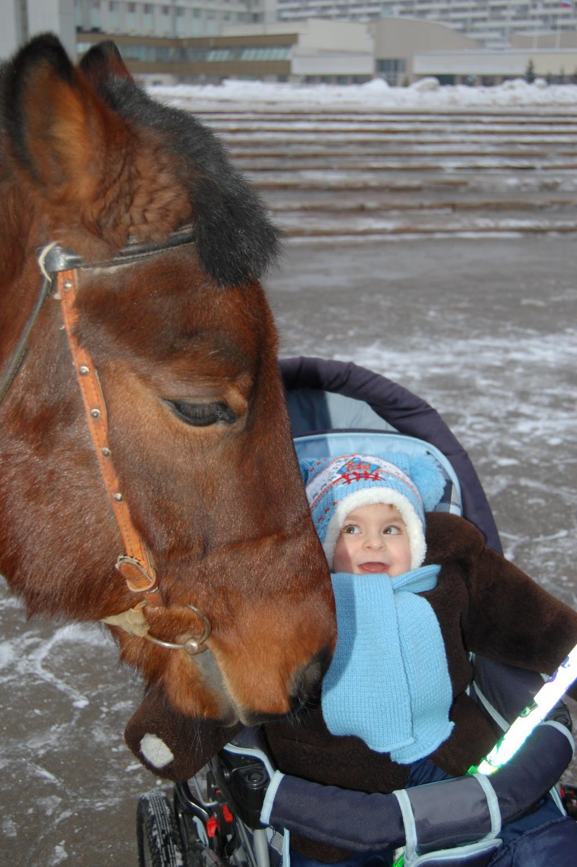Малыш и пони. Братья наши меньшие