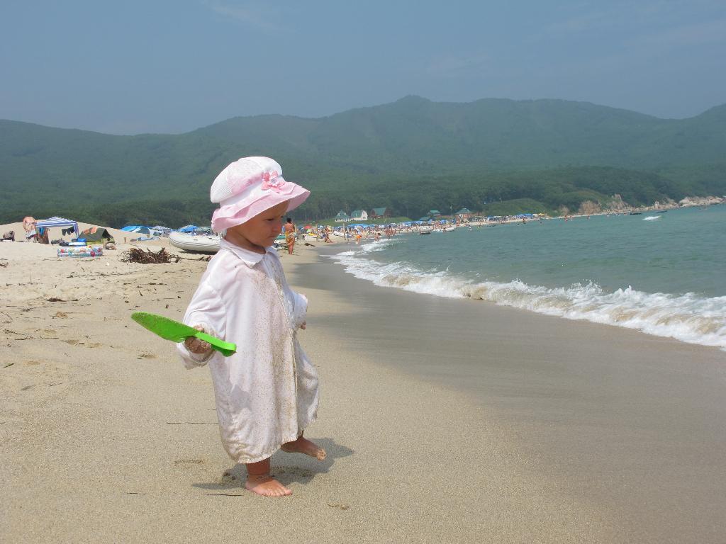На берегу Японского моря. Летний образ