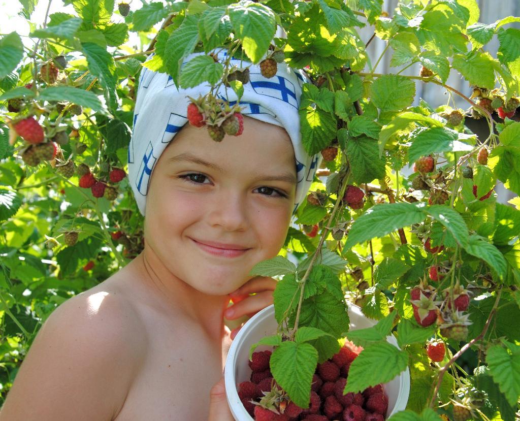ягода-малина нас к себе манила.... Дары лета