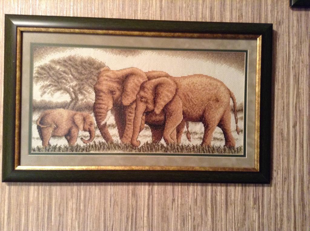 Слоны в интерьера. Великолепное семейство . Животные