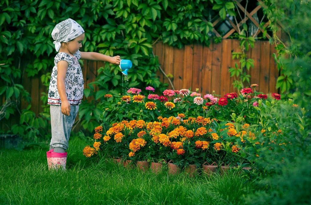 Наше яркое лето!.
