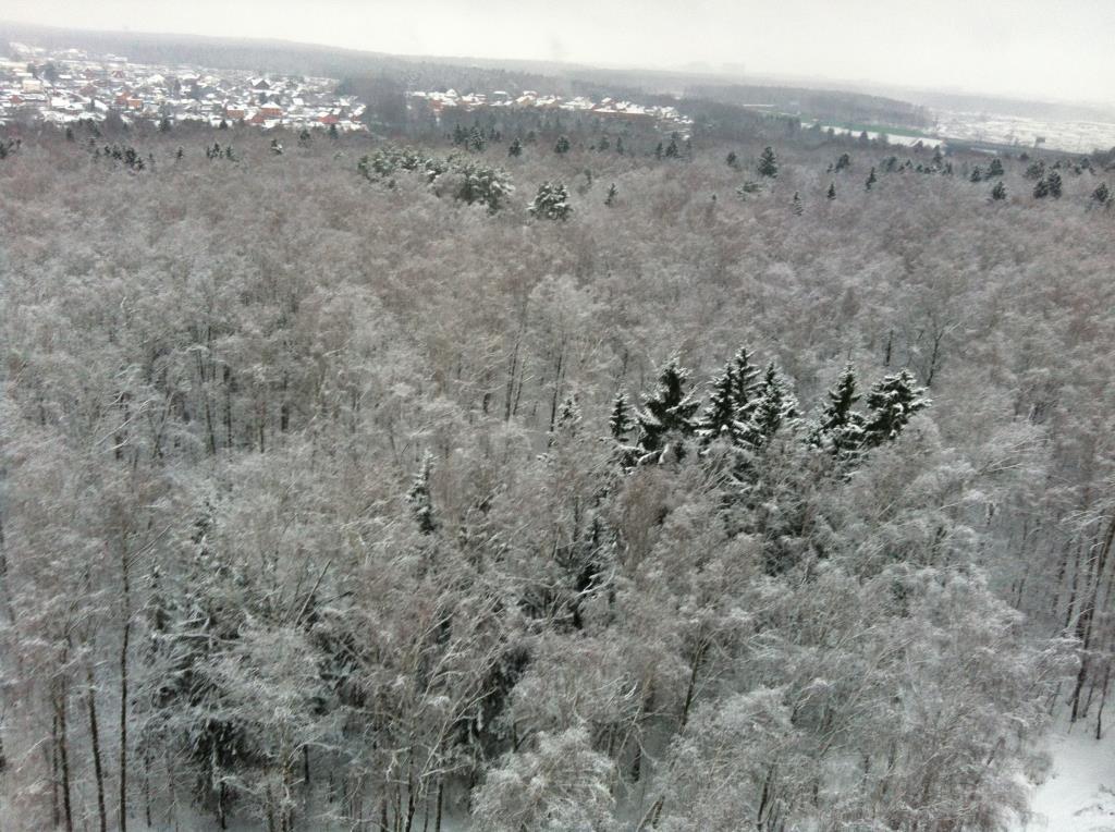 вид из моего окна зима. А из нашего окна...
