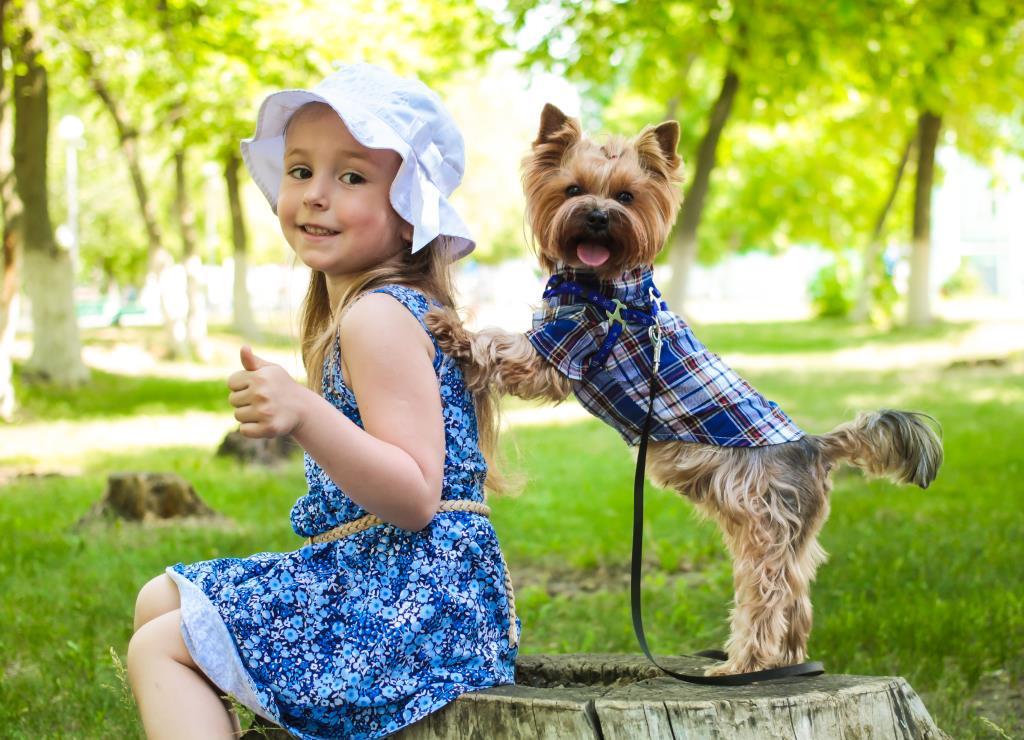 'Мы с Семой лучшие друзья'. Закрытое голосование фотоконкурса «Моя маленькая собака»