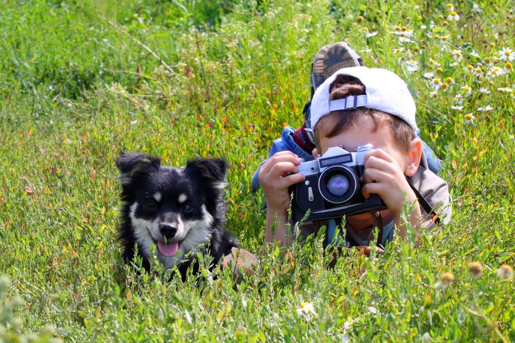 На фотоохоте.. Моя маленькая собака