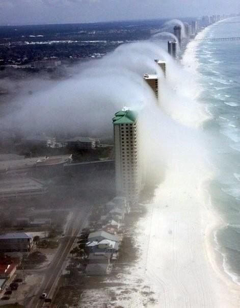 Туман Флорида.