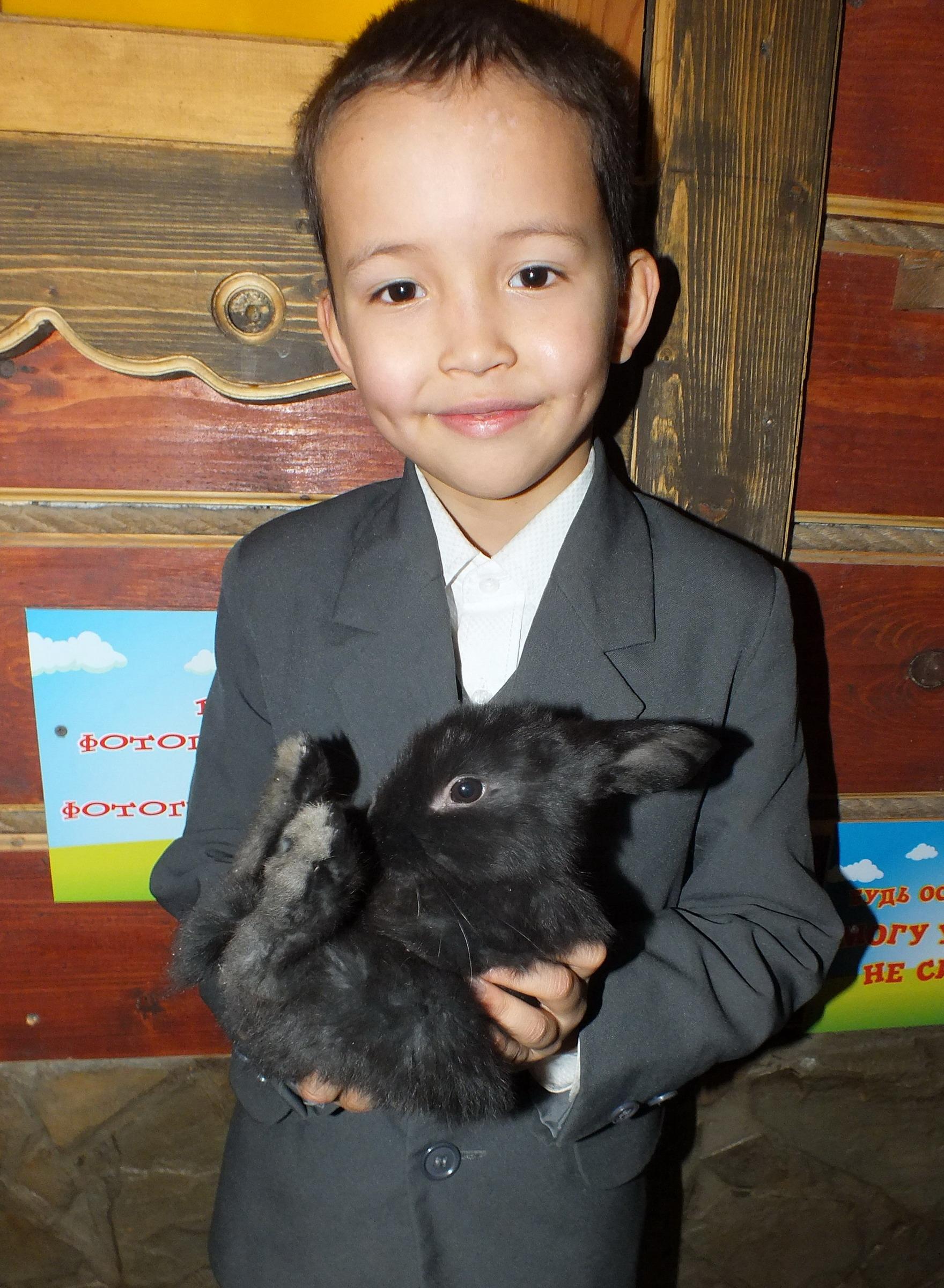 Два зайчонка. Зверье моё