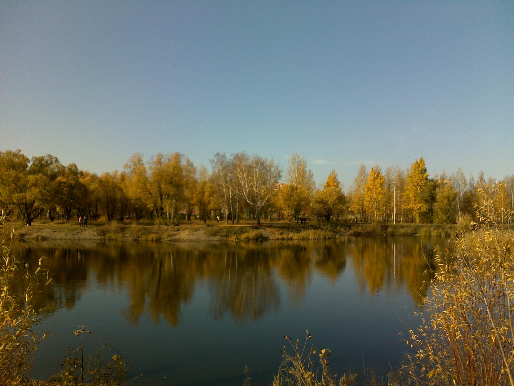 Осень в парке. Блиц: осенний пейзаж