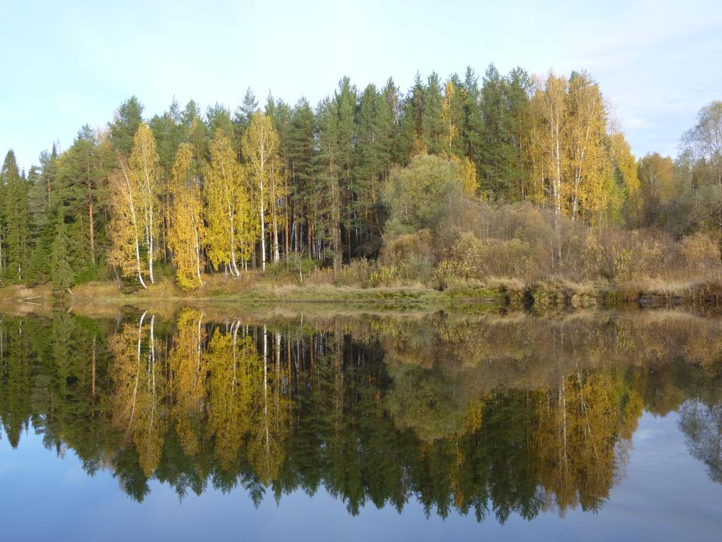 Осень.. Блиц: осенний пейзаж