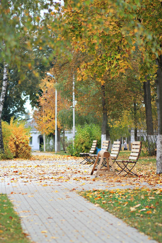 Последние тёплые Осенние деньки!!!. Блиц: осенний пейзаж