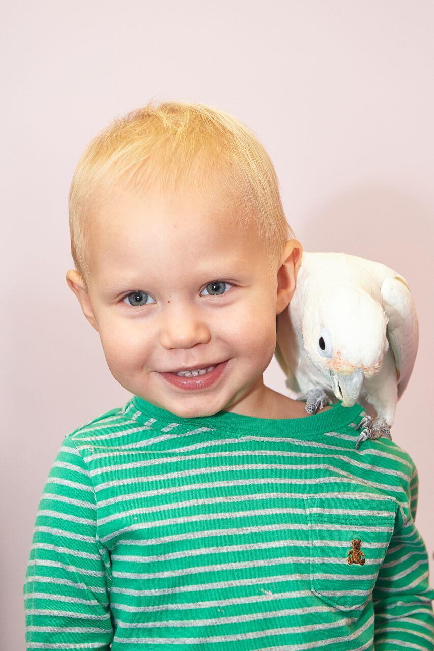 Яков и попугай. Зверье моё