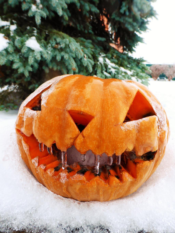 Едва отметили хэллоуин.... Блиц 'Первый снег'