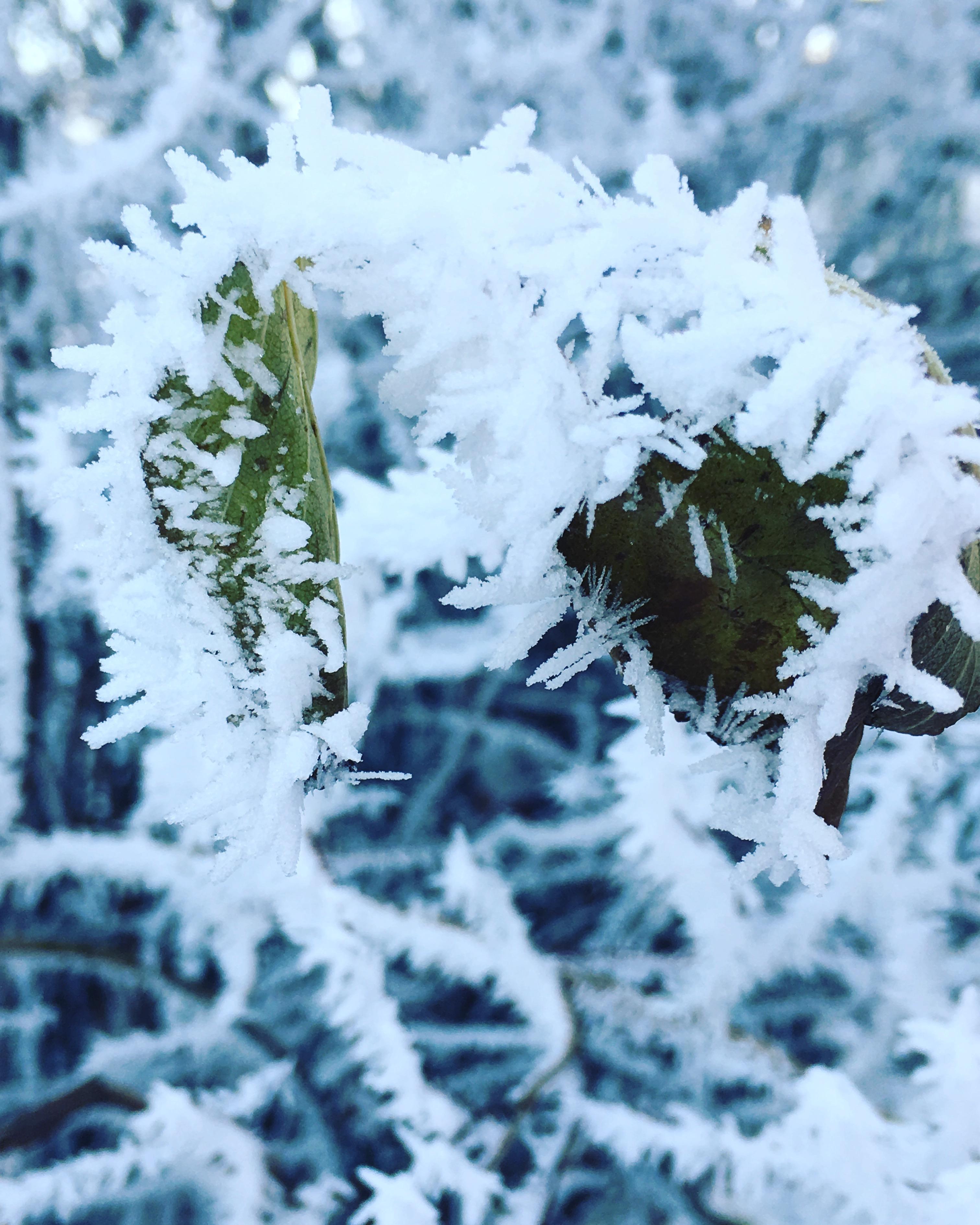 Ювелирная работа ноября ;). Блиц 'Первый снег'