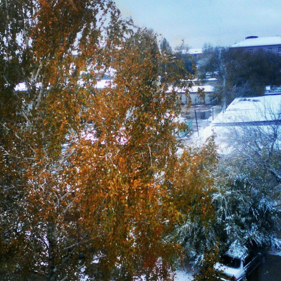Первый снег! Октябрь 2016.. Блиц 'Первый снег'