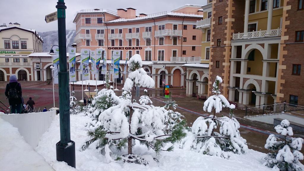 Первый снег. Блиц 'Первый снег'