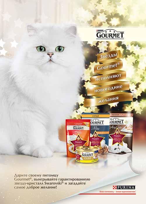 Gourmet исполняет добрые мечты
