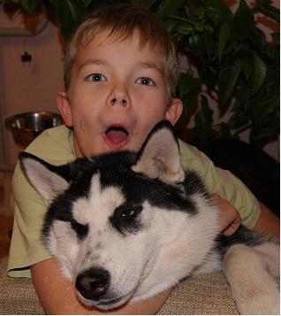 Я и моя собака. Зверье моё