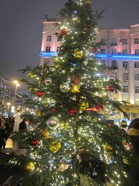 На площади Тверской наряженная ёлка. Блиц: новогодняя елочка